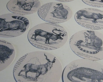 30 Victorian Animals - Card Disk Embellishments for Paper Crafts/Scrapbook/Card-making