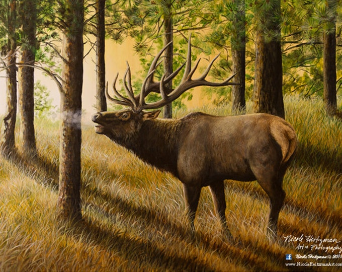 Elk Print Evening Echoes Elk Art Elk Painting Elk Hunting Giclee Canvas Print Christmas Gift for Dad Black Hills Scenery by Nicole Heitzman