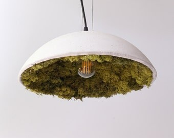 Concrete lamp shade with Iceland Moos
