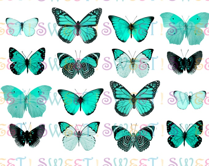 Edible Butterflies, Double-Sided 3-D Single-Color Butterfly Variety Collection for Cakes, Cupcakes or Cookies