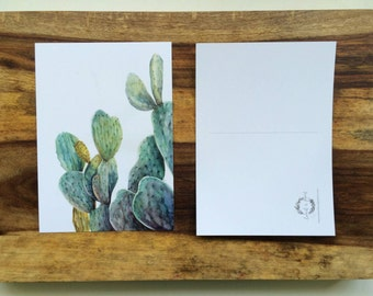 Cactus 2 - Postcard