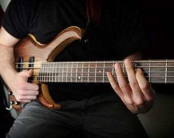 How to Play the Bass Guitar Learn Bass Guitar Easy Step By Step Guide to Frets, Strings etc eBooks PDF DIY music lessons
