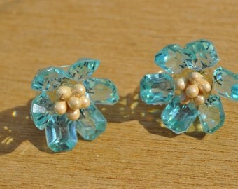 Clearance Item 40% off*******Vintage 1950s Blue and White Flower Screw Back Earrings