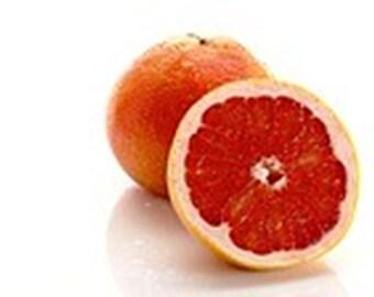 Star Ruby Red Grapefruit Tree (Grafted) /Bonsai Tree/Fruit Tree/Citrus Tree/Flowering Tree/Live Tree/Live Bonsai