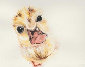 Duckling: nursery series