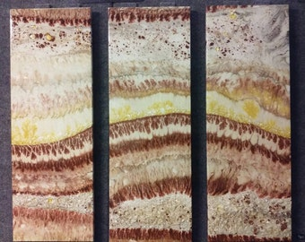 Earth Tones Triptych