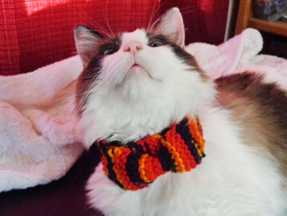 cat collar- hand knit red/navy/yellow
