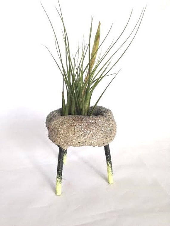 Yellow and Black Faux Rock Air Plant Stand