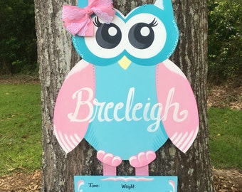 Owl Hospital Door Hanger, Owl Nursery, Owl Nursery Decor, Little Girl Owl Room