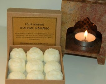 Free UK shipping! Thai Lime and Mango Scented Soy Wax Melts x 9