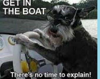 "2"" x 3"" Schnauzer Funny Boat Meme Pet FRIDGE MAGNET Locker MAGNET"