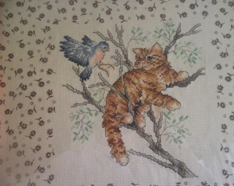 Tabby Cat and Bluebird