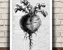 Kitchen poster Beetroot print Food art Vegetable print RTA519