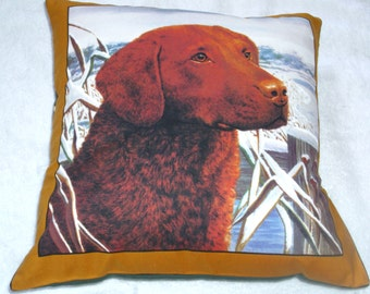 Lovely Honey Labrador waiting patiently in the snow cushion