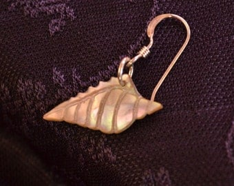 Cone shell