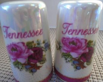 Vintage Tennessee Souvenir Salt/Pepper Shaker Set