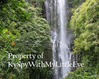 Wailuea Falls