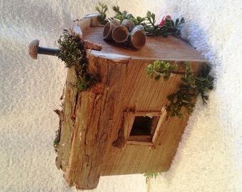 Fairy House, Texas shotgun house