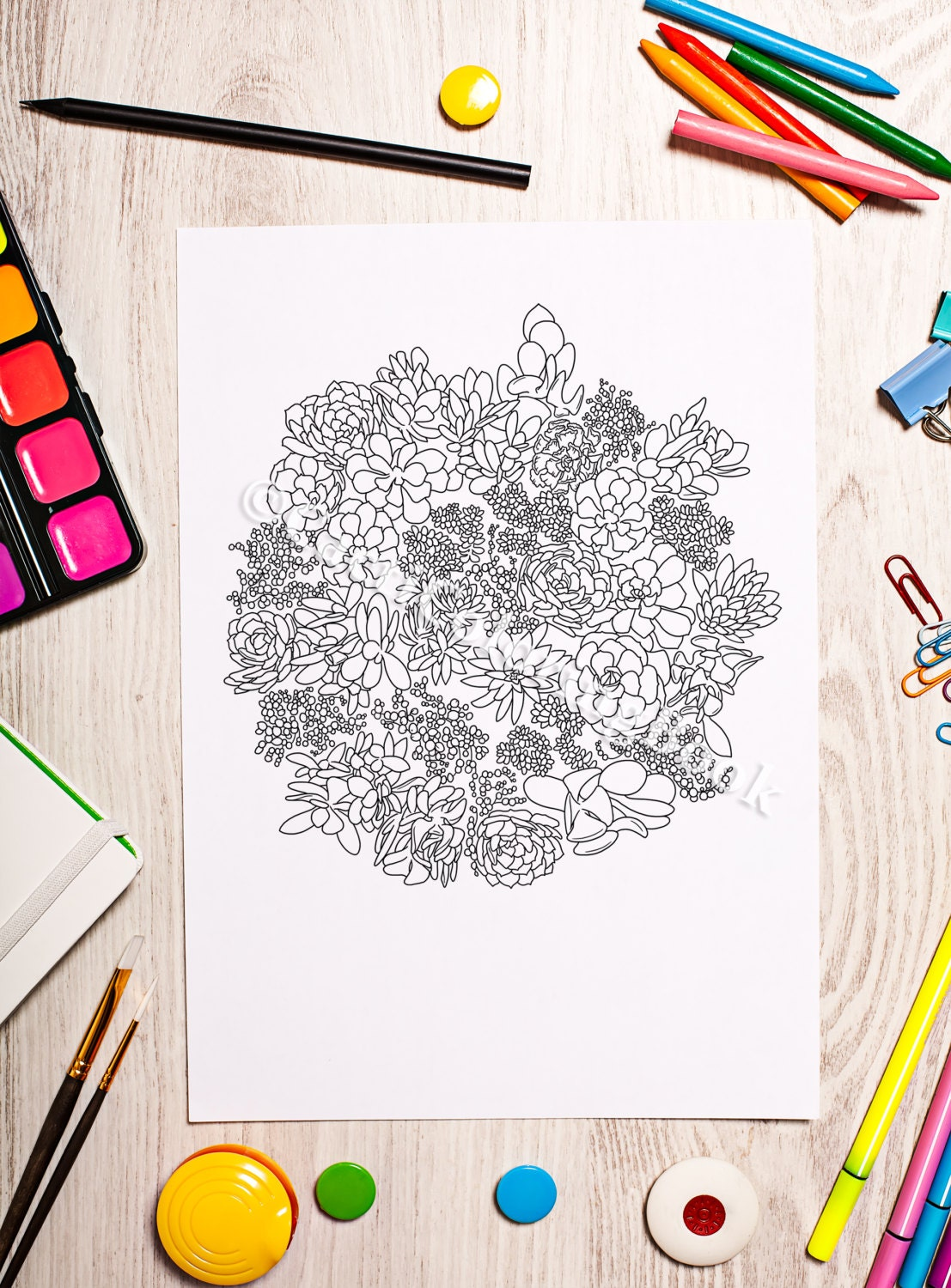 The sneaker coloring book pdf - Succulent Plant Garden Coloring Page Digital Download Pdf