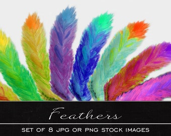 Feather clip art, digital watercolor clipart, drawing, illustration,print, printable, download, commercial use, PDF, JPG, PNG