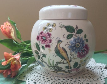 Sadler Ginger Jar, Ivory with a Bird of Paradise/ Floral Pattern, Made in England