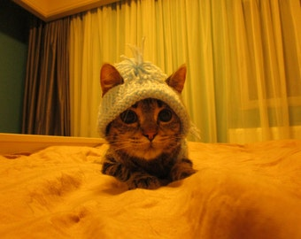 hat for cat