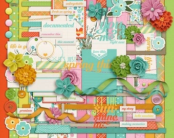 Spring Thing- Digital Scrapbooking Kit - 18 Paper - 60 Plus Elements - Paper Size - 12 x 12 Inches