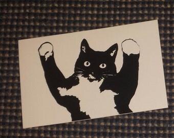 Pedro the cat sticker