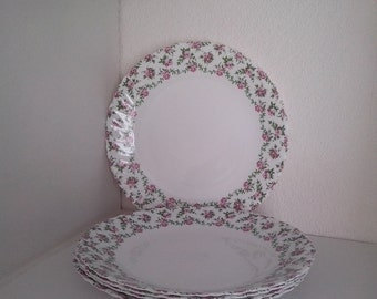5 dinner plates pastoral and romantic LUMINARC