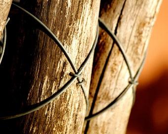 Fence Envy