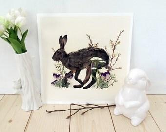 Print - Hare gardens