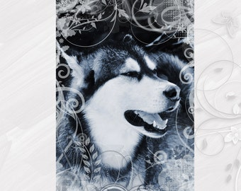 "Post card greeting card ""Alaskan Malamute"" dog - [# GK. 2012.034]"