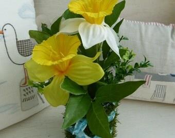 Easter Daffodil Pot