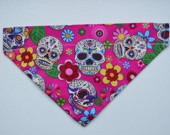 Funky Candy Skull Print Collar Through/Slip on Bandana's