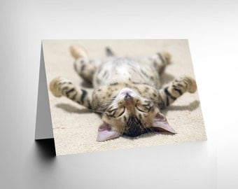 Card Greeting Supine Cute Sleeping Kitten Cat Gift CL1722