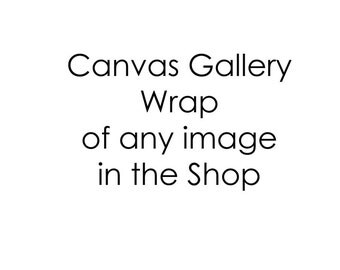 Canvas Gallery Wrap of any Image in the Shop