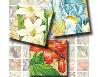 Vintage Flora 1 x 1 Inch Square Images Digital Collage Sheet Ready to Print