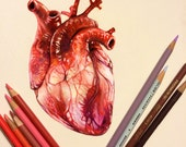 Colored Pencil Heart Draw...