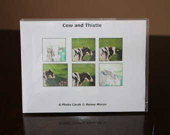 Cow and Thistle Photo Notecards