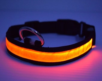 LED lighted Orange Dog Collar