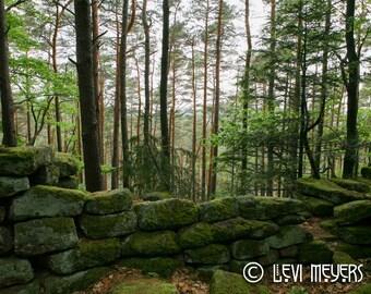Pagan Wall, Alsace - Photograph