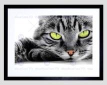 Animal Photo Sleepy Grey Green Eyed Cat Close Art Print Poster Picture FEBMP214B