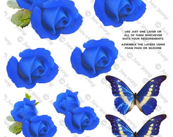 Dark Blue Roses & Butterflies