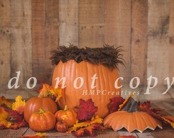Fall Pumpkin Newborn Digital Backdrop