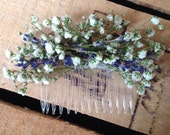 Dried Gypsophila Babys Breath and English Lavender Ladies Hair Comb Slide Flowers Wedding Rustic Boho
