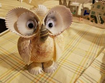 Owl by seashell