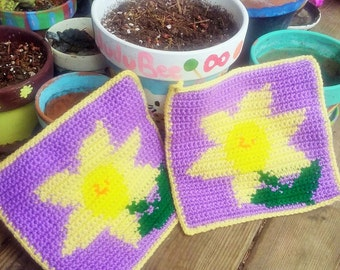 Daffodil Pot Holder