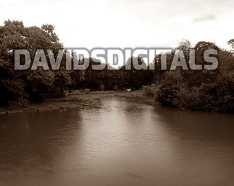 Duck pond digital download photography