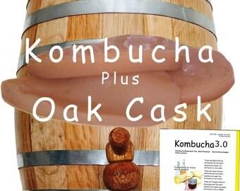Kombucha SCOBY plus Oak Barrel Free Shipping