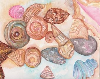 Shells watercolor painting original, Seashells Painting, 8 x 10  Original watercolor painting of seashells, beach decor, cottage decor art